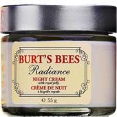 Burt's Bees - Ansikte - Radiance Night Cream