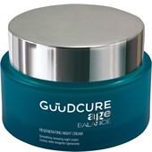 Guudcure - Age Balance - Regenerating Night Cream
