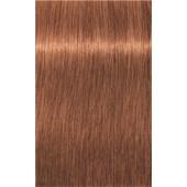 INDOLA - PCC Red & Fashion - 8.43 Light Blonde Copper Gold