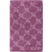 JOOP! - Cornflower - Gästhandduk Magnolia