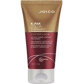 Joico - K-Pak Color Therapy - Luster Lock Instant Shine & Repair Treatment