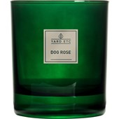 YARD ETC - Candles - Scented Candle Dog Rose