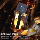 DIOR - Dior Homme - Eau de Parfum Spray Intense
