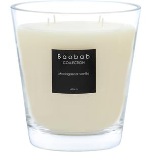 Baobab - All Seasons - Doftljus Madagascar Vanilla